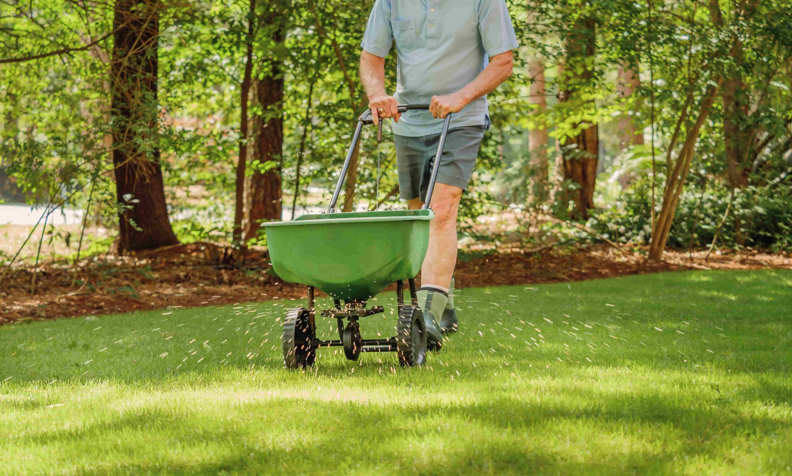 Reinvigorate Your Lawn by Spring Seeding