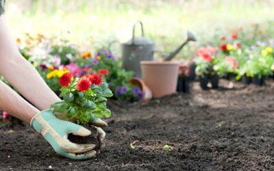 Gardening Guru Guidelines for NJ Friendly Gardens