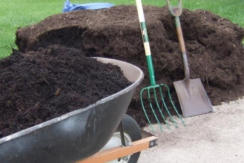 Mulching Trees and Gardens – Magic or Mess?
