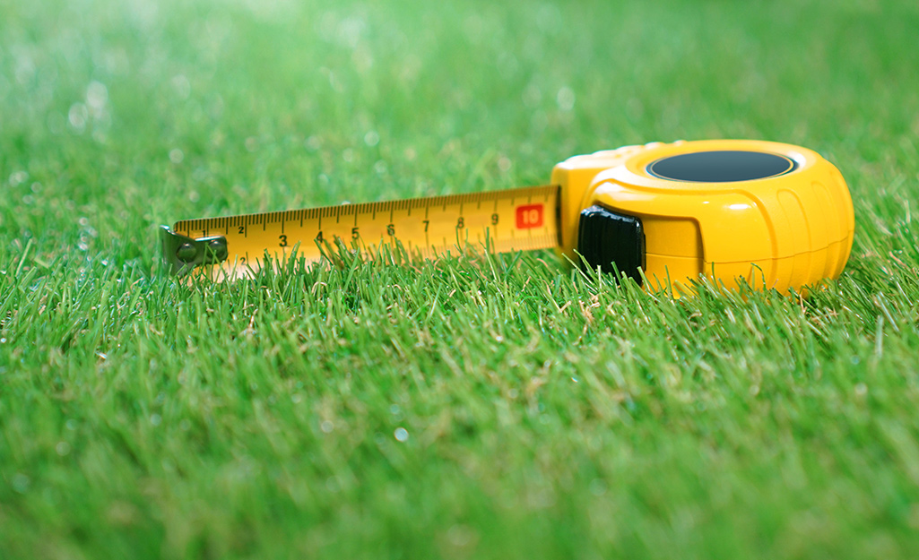 Ruler on a lawn